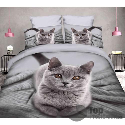 3D povlečení 140x200 + 70x90 - Kočička