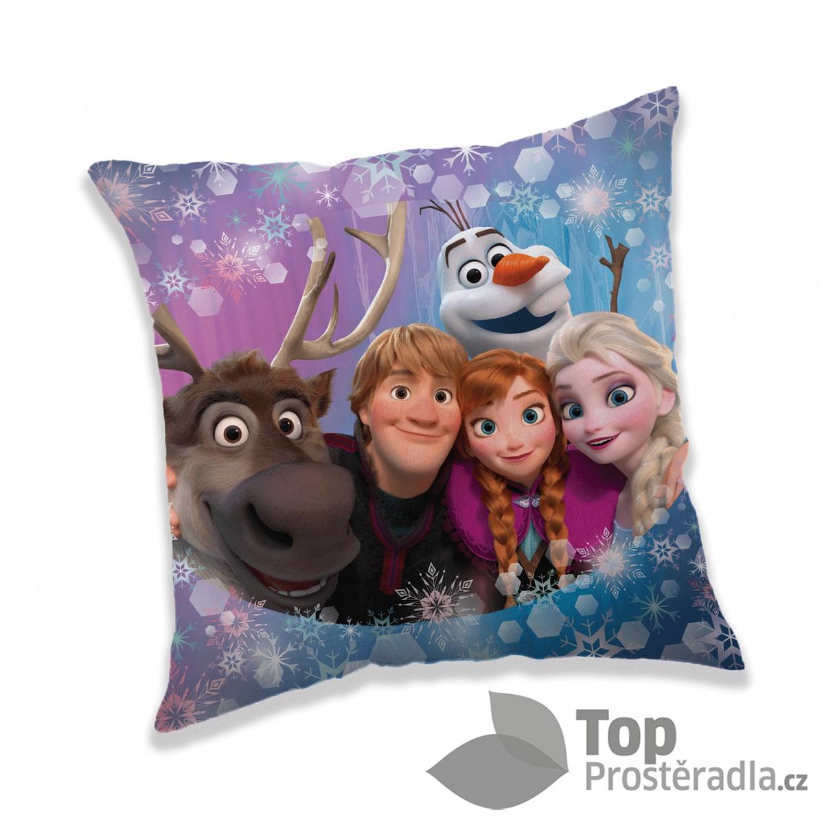 Dekorační polštářek 40x40 cm - Frozen family