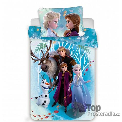 Bavlněné povlečení 140x200+70x90 Frozen II Family