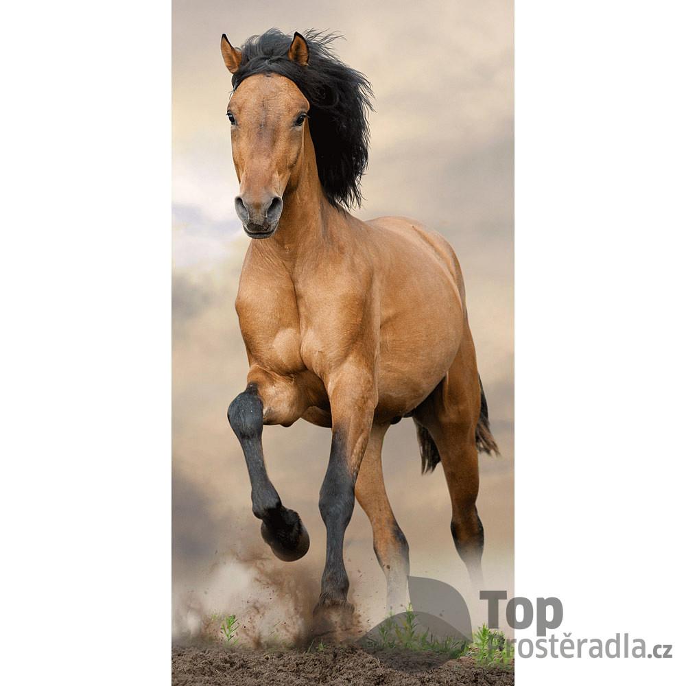 TOP Osuška 70x140 - Kůň