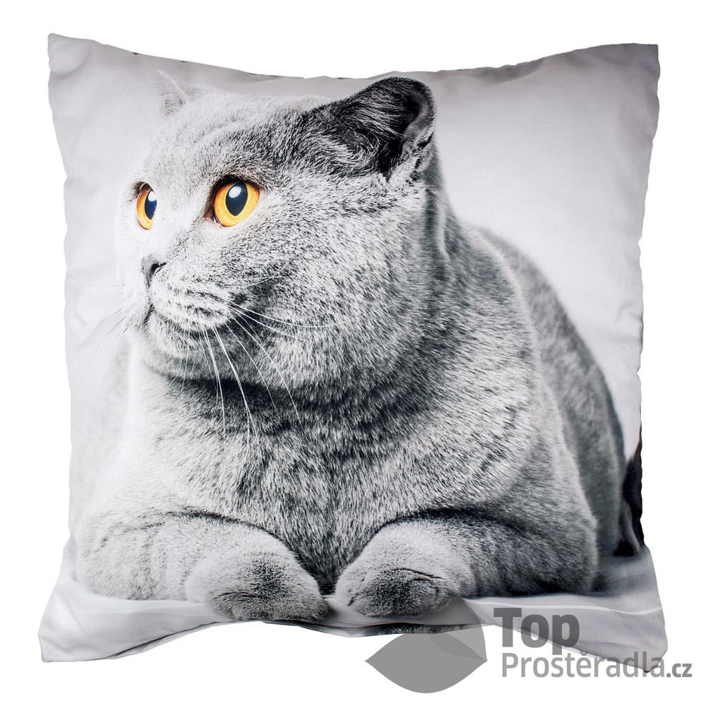 Levně Apex 3D povlak 45x45 - Grey Cat